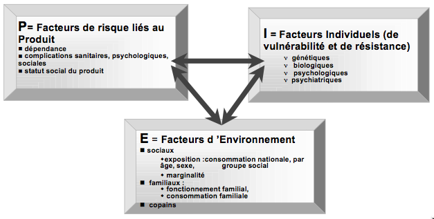 reynaud2002-rique_usage_nocif_ou_dependance